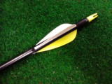 Easton GAMEGETTER XX75 2315 / duralový šíp