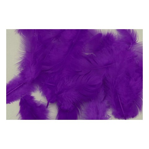 55e70b62237 Ozdobné slepičí peří 10 g - fialová inkoust empty