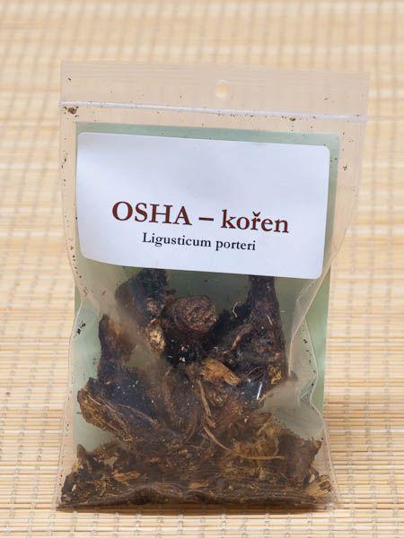 Osha – kořen