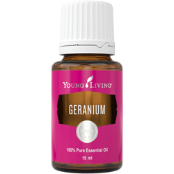 Geranium (Pelargonie) 15 ml